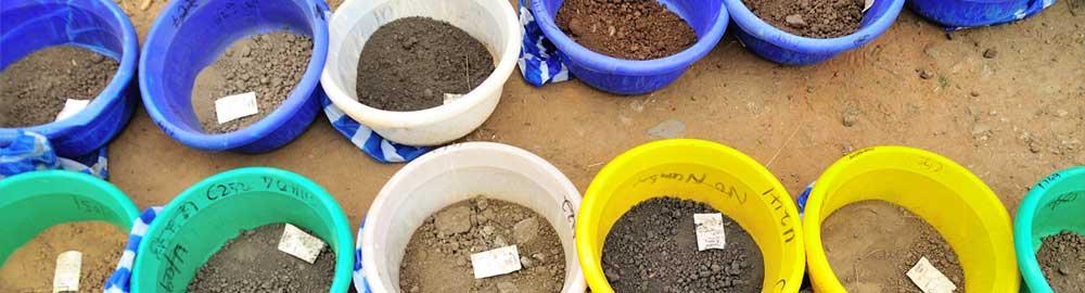 Buckets of samples